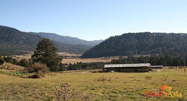 Bhutan Attractions in November
