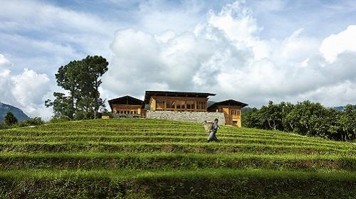 Exterior View of Uma Punakha